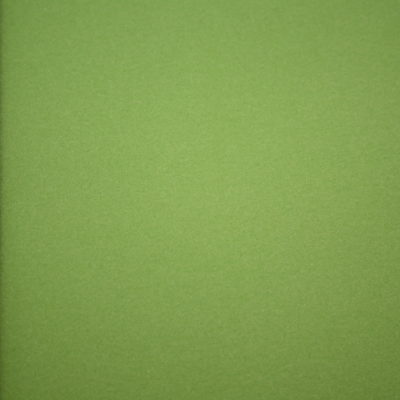 renee-d.de Onlineshop: Dünner Sportfleece Fleece grün