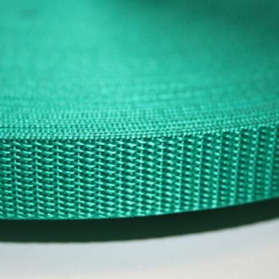 renee-d.de Onlineshop: Gurtband grün 2 cm breit