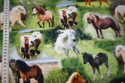 renee-d.de Onlineshop: Jersey Stoff Digitaldruck Pony Pferde