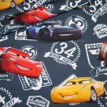 renee-d.de Onlineshop: Jersey Stoff Cars Disney
