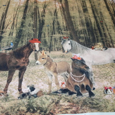 renee-d.de Onlineshop: Stenzo Pferde im Wald Jersey