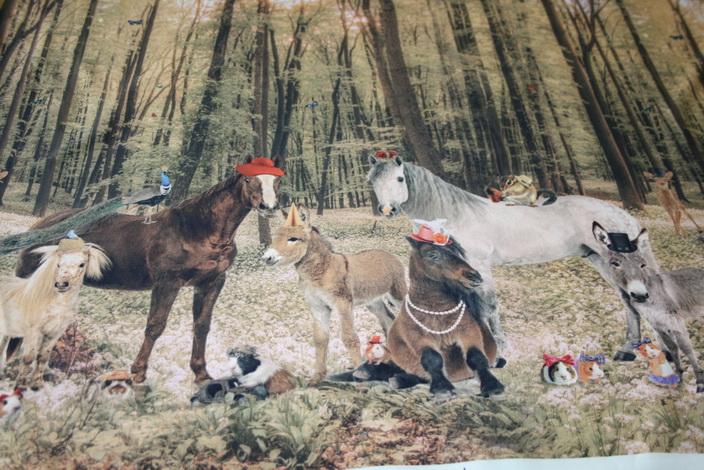 Stenzo Jersey Stoff Digitaldruck Pferde Tiere im Wald Bordüre