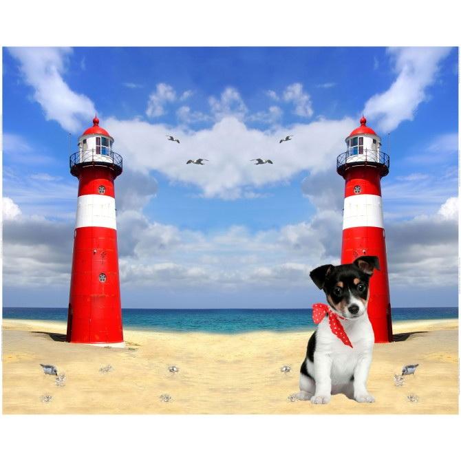 Stenzo Jersey Stoff Digitaldruck Kleiner Hund am Strand großes Panel