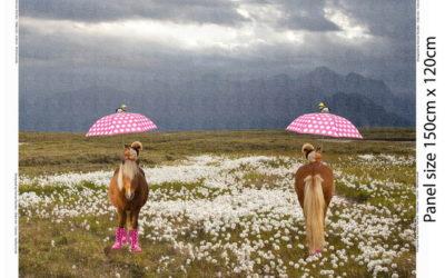 Pony im Sommerregen Panel!