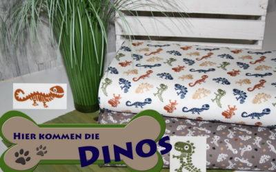 Die Hilco Dinos kommen…