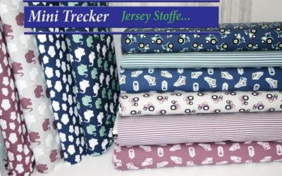 Mini Jersey Serie