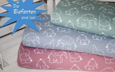 Die Elefanten sind wieder da!!