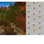 Stenzo Jersey Stoff Digitaldruck Panel Dinos Dinosaurier
