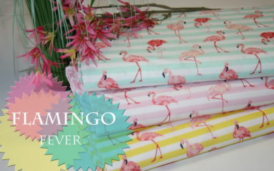 Flamingo Fever!