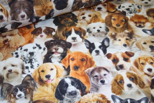Artikel aus dem renee-d.de Onlineshop: Fester Dekostoff Hunde