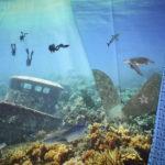 Stenzo Jersey Stoff  Panel Taucher Meer Fische