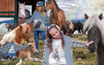 Pferde Pferde Pferde…