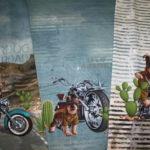 0,75m Stenzo Jersey Stoff Panel Motorrad Hunde (Grundpreis: 19,86€)