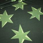 Hilco Dünner French Terry Jersey Stoff by Jatiju Big Pattern grün Sterne